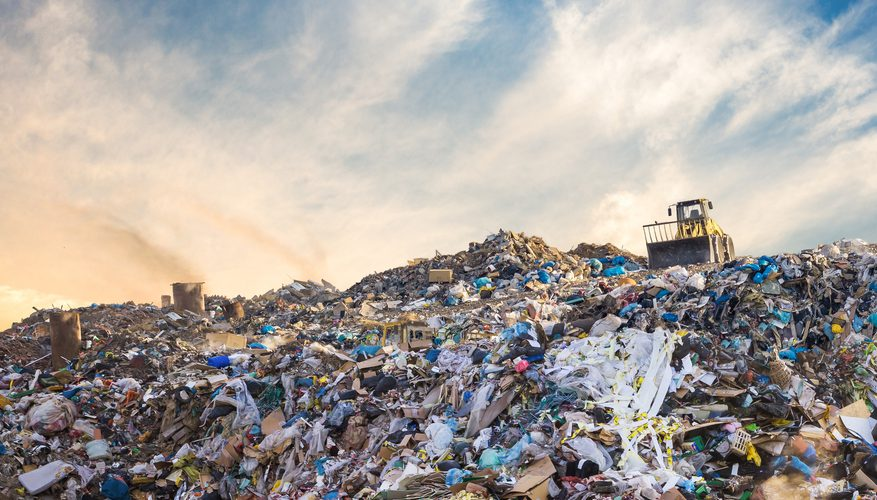 landfill record waste disposal
